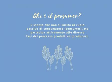 Decalogo della Comunità Energetica. #6 Chi è il prosumer?